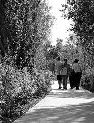 Visita  Jardins e Instalações de Arte Permanentes