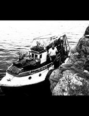 FILMar | O Jogo da Sardinha + Ródur + Elmer og Blomsterbåten